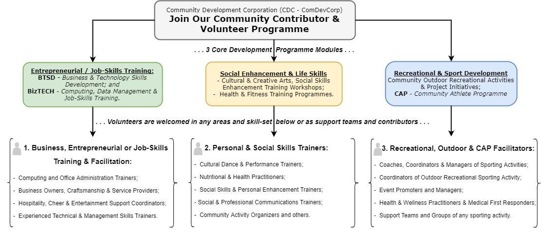 P100 Programme Structure